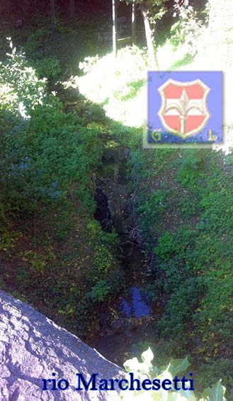 rio marchesetti
